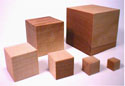 PROJECT LEAD THE WAY PLTW-1090 3/4 INCH WOOD CRAFT BLOCKS 1000 pack